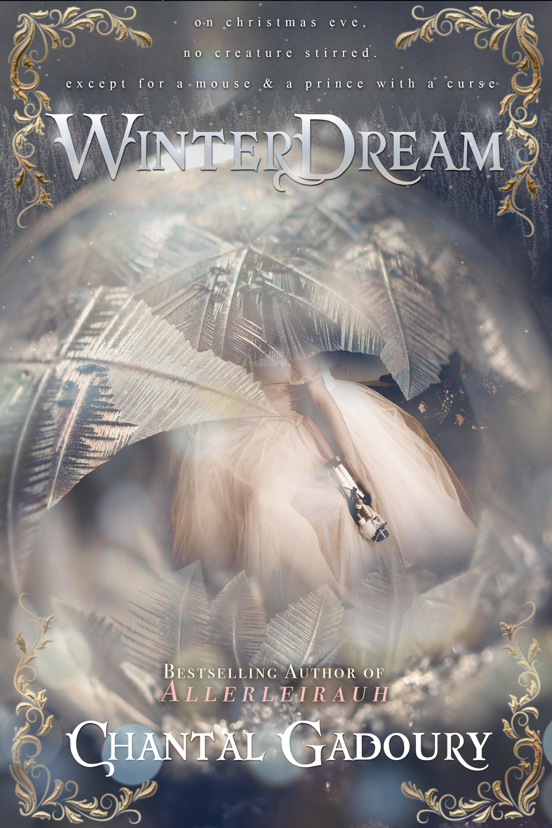 Winterdream fixed cover